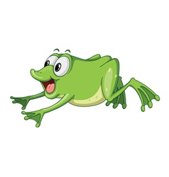 a green frog jumping vector image