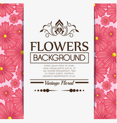floral background decorative frame vector image vector image