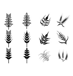 Black wheat icons set vector