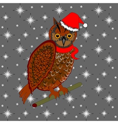 A Christmas owl on a snowing background vector image