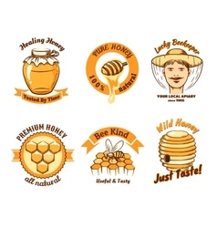 Honey labels and beekeeping logo vector