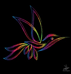 image of an hummingbird vector image vector image
