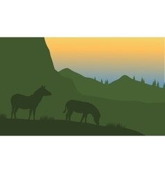 Silhouette of zebra on the mountain vector image vector image