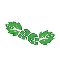 Hops icons vector