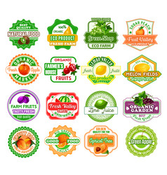 labels tropical exotic fruit juice icons vector image vector image