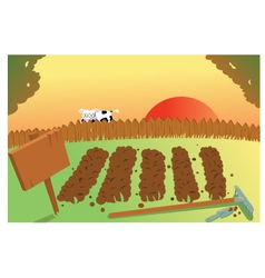 Sunset and cow on vegetable garden vector