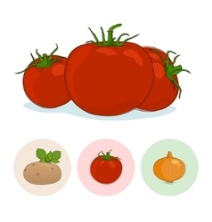 Icons tomatoes potato onion vector