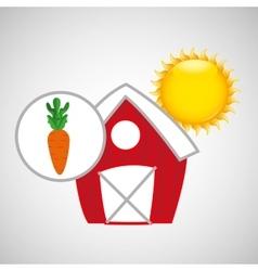 farm countryside food carrot design vector image vector image