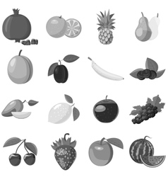 Fruit icons set gray monochrome style vector image vector image