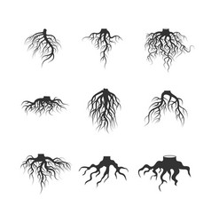tree and plant underground roots set vector image vector image