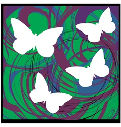 Butterflys vector
