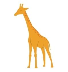 African animal icon giraffe design vector image