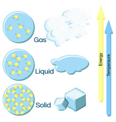 Fundamental states of matter on example of water vector