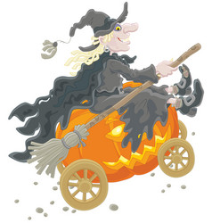 halloween witch with a pumpkin vector image vector image