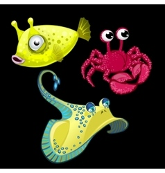 Set of three fish Stingray crab and cute bigeye vector image