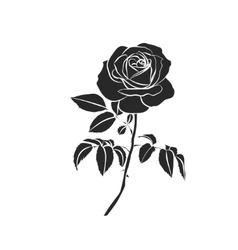 Silhouette of rose vector