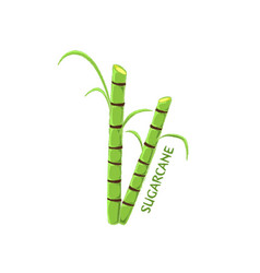 logo icon design sugarcane farm vector image