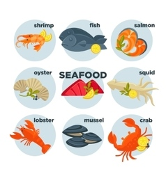 Seafood set crab lobster fish and shrimp squid vector