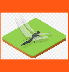 Dragonfly eps vector