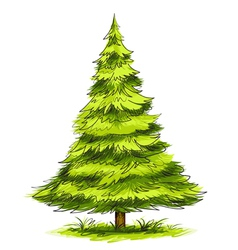 Green christmas tree vector