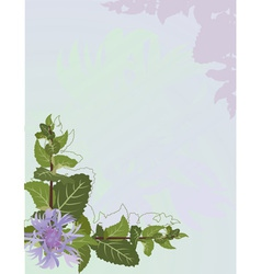 Mint background vector