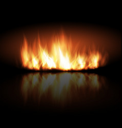 Realistic fire on dark background vector