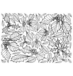 Hand drawn of christmas holly twig background vector