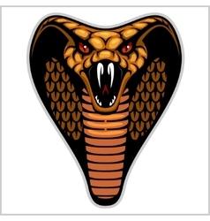 Snake head on white - vector image