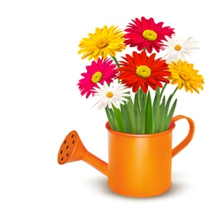 Colorful fresh spring flowers in orange watering vector