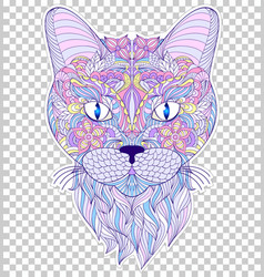 Colorful head of cat vector