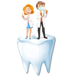 Dentists and tooth model vector image vector image
