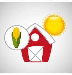 farm countryside food corn design vector image vector image