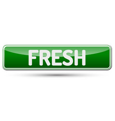 Fresh - abstract beautiful button with text vector
