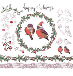 collection of different winter birds christmas vector image vector image