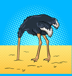 Ostrich hid its head in the sand pop art vector