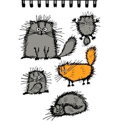 Fluffy cats collection sketch for your design vector