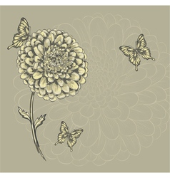 beautiful flower with butterflies vector image vector image