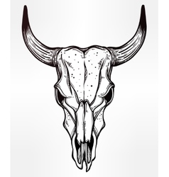 Hand drawn romantic style cow or bull skull vector image vector image