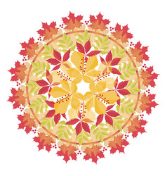 colorful mandala with autumn leaves and branches vector image