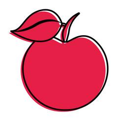 fruit fresh apple vitamins diet vector image