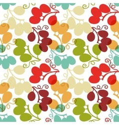 Seamless Pattern with Grape vector image