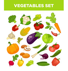 vegetables and veggies vegetarian icons set vector image vector image