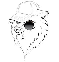 Wolf in baseball cap vector