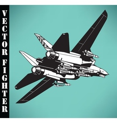 air fighter vector image vector image