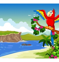 Funny red parrot cartoon on a branch with lake vector