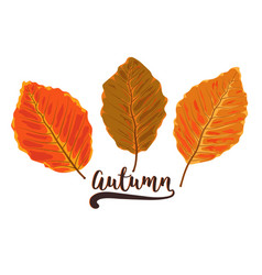 autumn watercolor style seasonal card design with vector image vector image