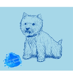 Dog on a blue background vector