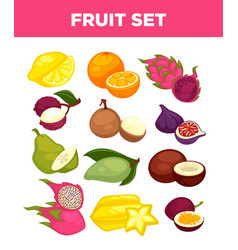 exotic tropical fruits isolated icons set vector image