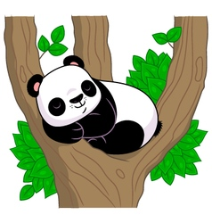 Panda sleeps on the tree vector image
