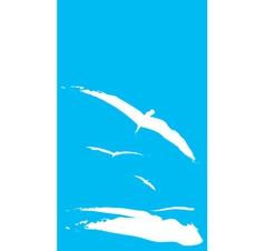 Sea Gulls vector image vector image